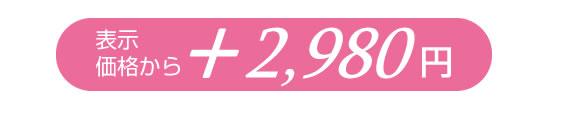 表示価格から3,880円
